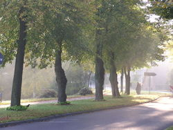 Kupfermühlenweg am Glinder Mühlenteich