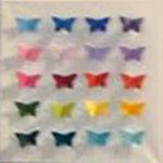 Schmetterlingsbild-5-weiß-20Farben-a
