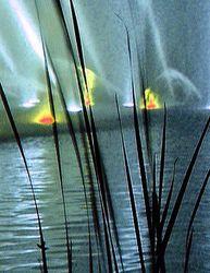 Highlight for Album: Lichterwasserorgel in Planten+Blomen(Hamburg)/2004