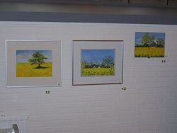 Bilder 11,12,13 Rapsfelder  12 zu Stemwarder Landstr. 11 bei Bauernhaus in Ohe