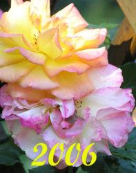 1-Kalender 2006.jpg
